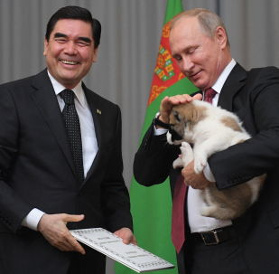 土库曼斯坦总统库尔班古力·别尔德穆哈梅多夫向俄联邦总统普京赠送了一只牧羊犬