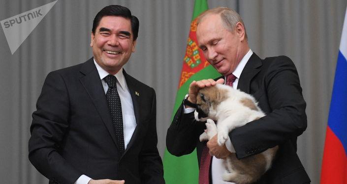 土庫曼斯坦總統庫爾班古力·別爾德穆哈梅多夫向俄聯邦總統普京贈送了一隻牧羊犬