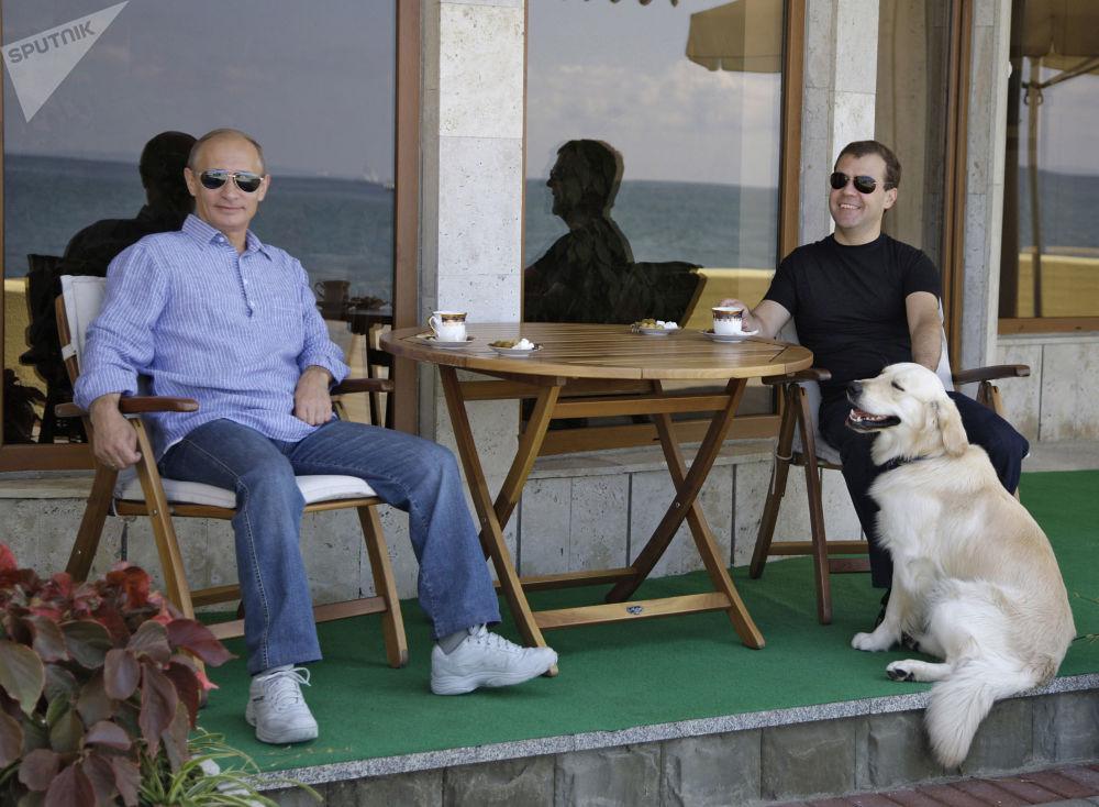 """普京、梅德韦杰夫与一只名为""""阿里多""""的寻回犬"""