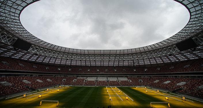 世界杯组委会主席:毫无疑问至明年春2018世界杯所有设施都将准备完毕