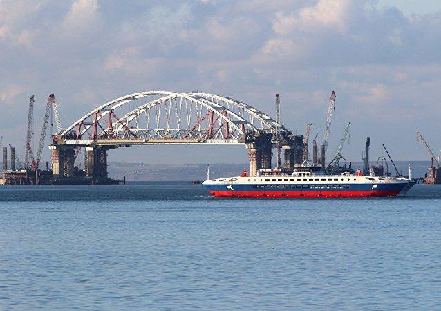 克里米亞跨刻赤海峽大橋施工未對海豚造成影響