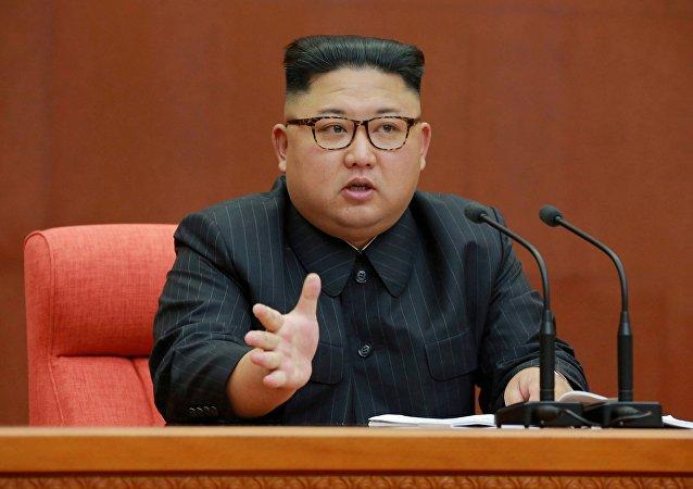 朝鮮最高領導人巴西護照曝光(圖片)