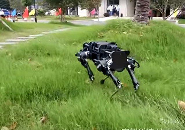 莱卡机器狗