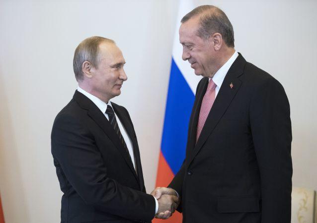 俄罗斯总统普京和土耳其总统埃尔多安(图片资料)