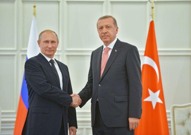 克宮:俄土總統將於11月13日在索契討論敘利亞和解問題