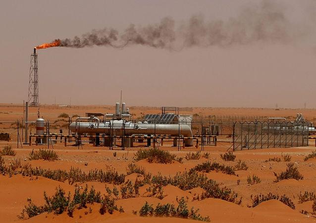 俄工商会:沙特紧张局势不会给俄罗斯带来风险