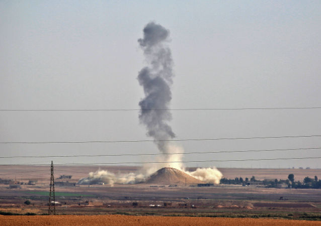 美国为首联军空袭致约100名叙亲政府组织武装人员丧生