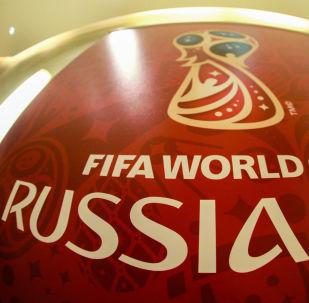 俄副总理:FIFA高度评价2018世界杯组委会筹备工作