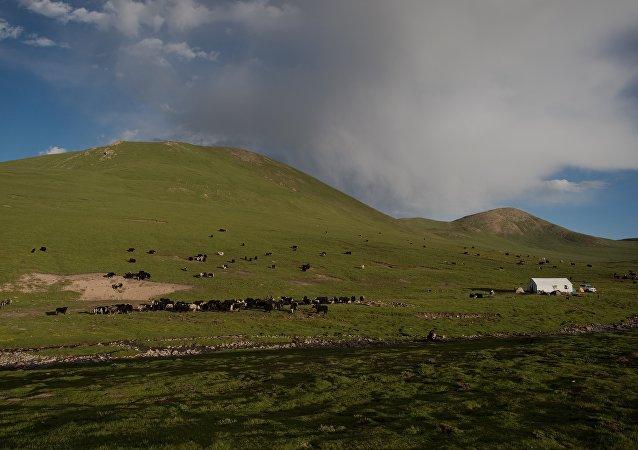 西藏发现未知远古遗迹