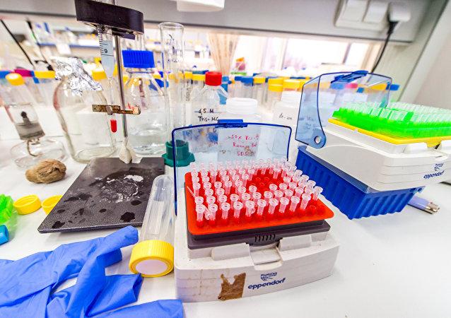 用动物干细胞做成的肉饼:科学家开始工业化生产合成肉