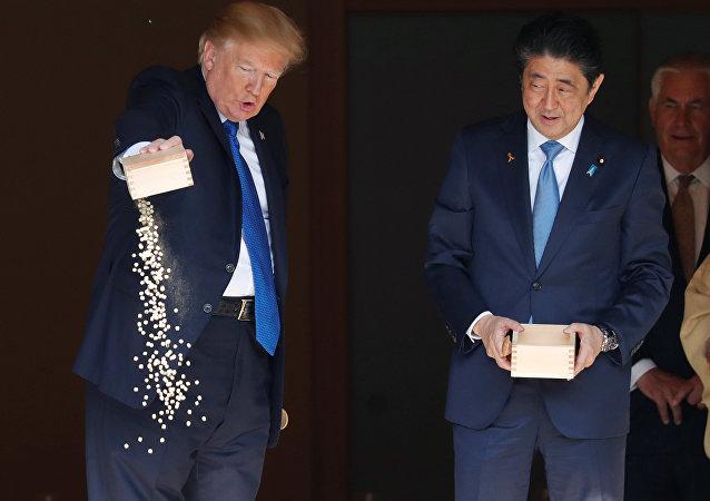 特朗普与日本首相一起喂锦鲤时出洋相