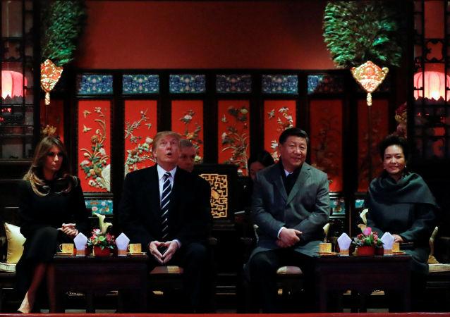 专家:朝鲜问题取决于特朗普向习近平提出什么建议