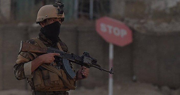 美國阿富汗問題特使未證實有關俄向塔利班供應武器的消息