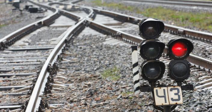 俄駐朝大使:連通俄朝鐵路所需投資或遠超40億美元