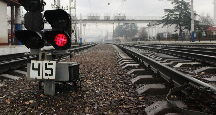 俄罗斯等国将花8年时间耗资64亿欧元将宽轨铁路延长到维也纳
