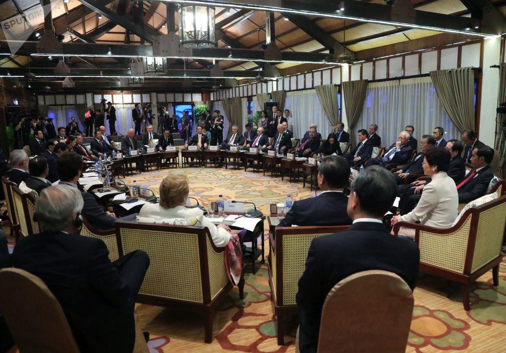 """俄联邦总统在越南岘港市的""""亚太经合组织""""峰会期间参加亚太经合组织与东南亚联盟领导人会面"""