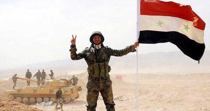 消息人士:叙政府军解放代尔祖尔省8个居民点