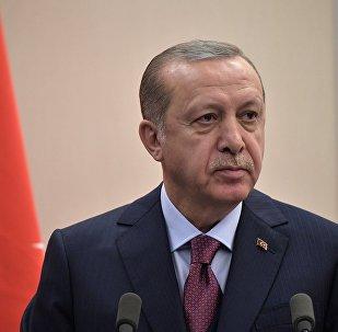 土耳其外長:埃爾多安將在未來幾周內訪問俄羅斯
