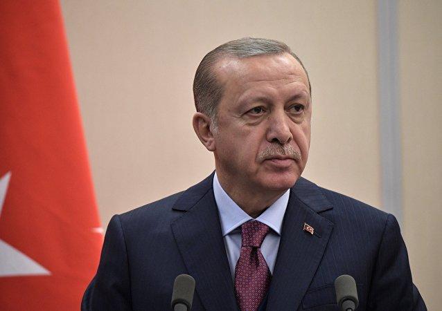 埃爾多安:土耳其將同樣清除伊德利卜的恐怖主義威脅