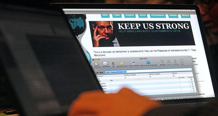 阿桑奇:维基解密将继续自己的活动