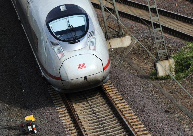 德国城际快车撞上野猪