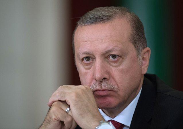 土耳其總統:庫爾德工人黨頭領在土空軍對伊拉克北部展開行動時死亡