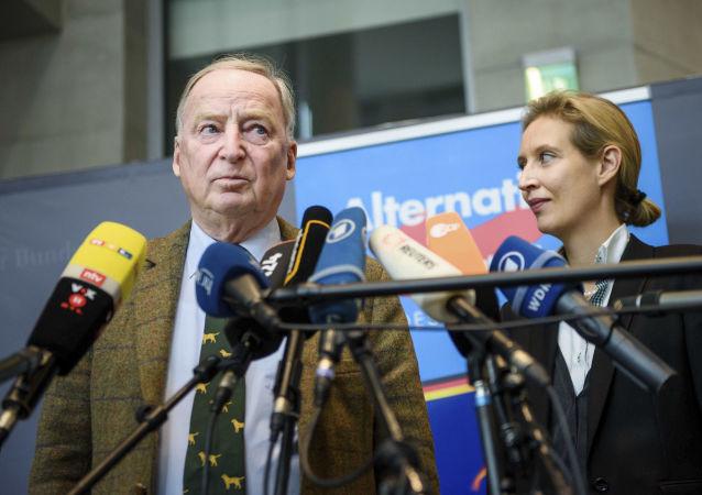 德國右翼政黨德國選擇黨領導人愛麗絲·韋德爾和亞歷山德爾·高朗德