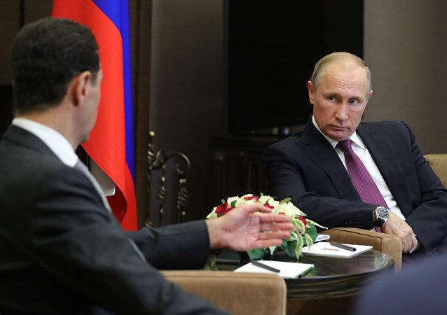 消息人士:俄土總統就敘局勢進行討論