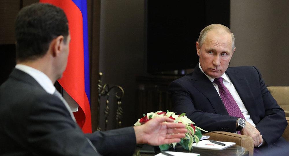消息人士:俄土总统就叙局势进行讨论