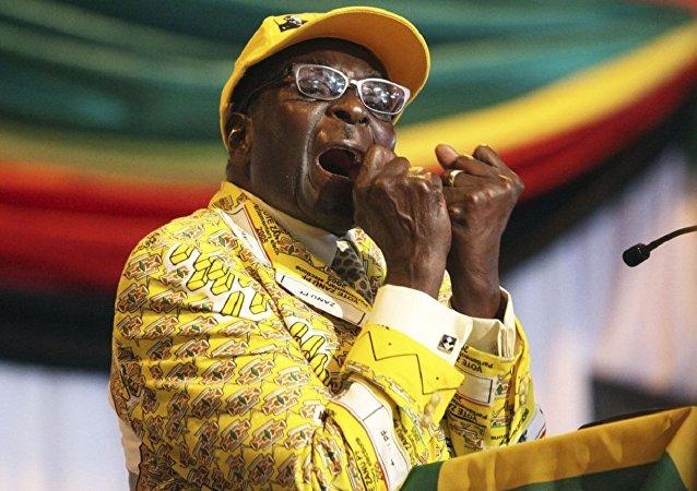 津巴布韋駐俄大使:穆加貝會拿到15萬美元,不過不是1個月,而是1年