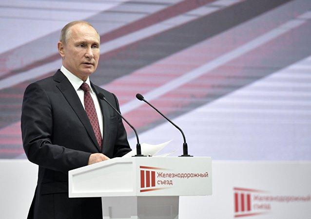 普京總統表示2017年是成功之年