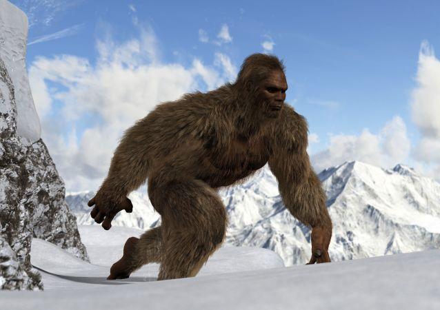 科學家:喜馬拉雅雪人實為熊