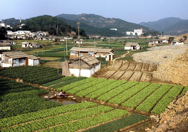 2017年中国农产品贸易逆差增长速度同比增长超过30%