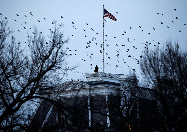 美國政府希望撤銷負責打擊伊斯蘭國行動總統特使一職