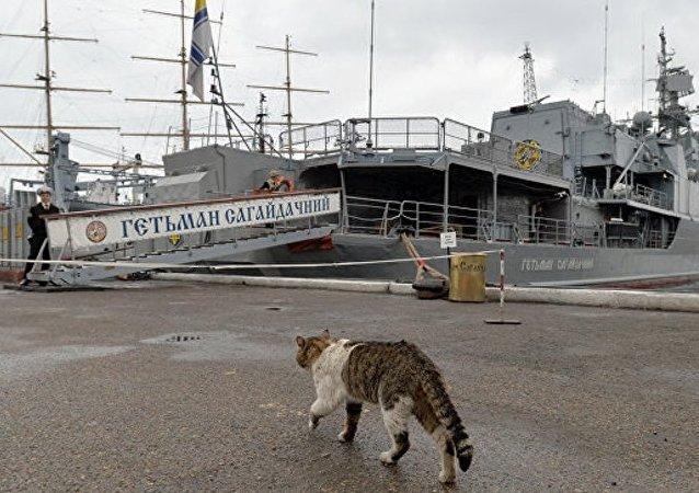 """乌克兰海军拟建""""蚊式舰队"""""""