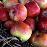 澳大利亚警察正在调查针是如何出现在草莓和苹果里一事