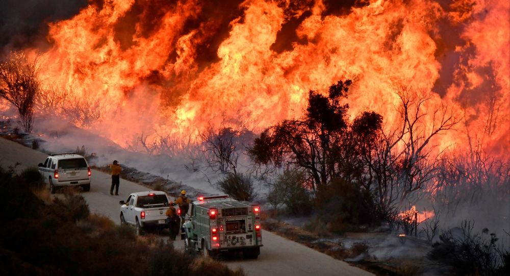 特朗普:加州火災造成災難性破壞