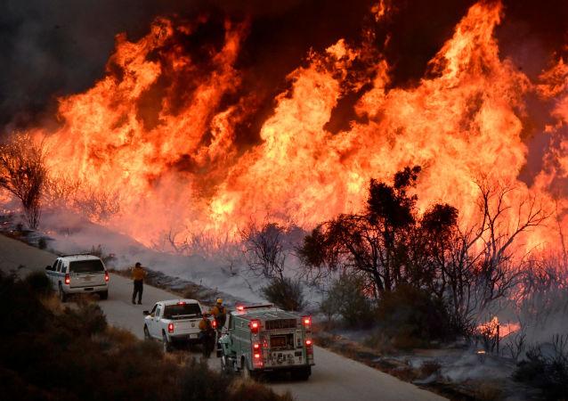 俄总理就加州大火造成人员死伤向美副总统亲自表示哀悼