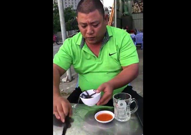 男子吞活章鱼(视频)