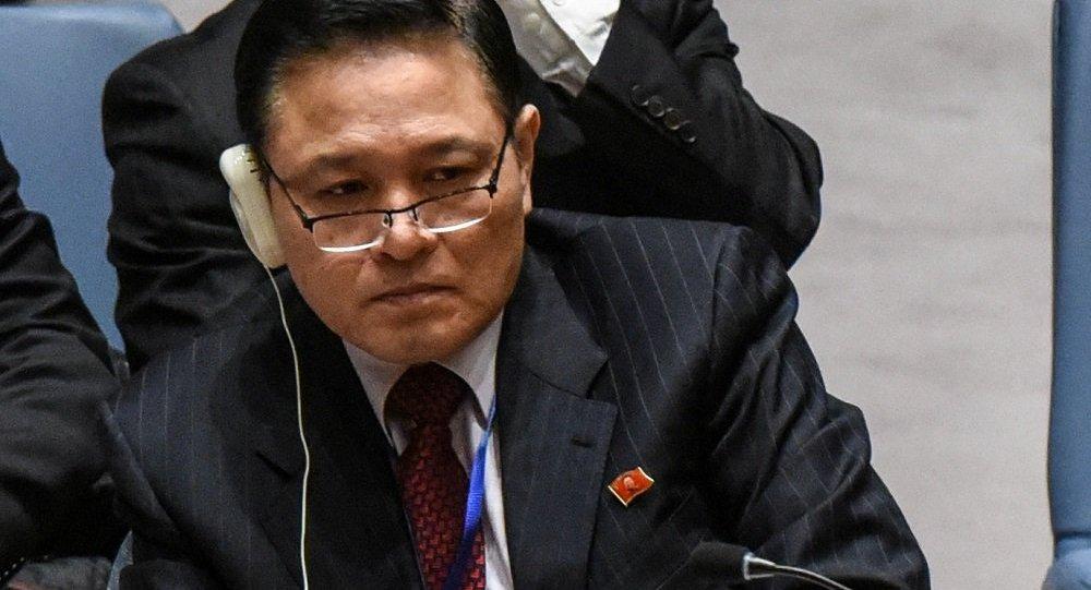 朝鲜常驻联合国代表慈成男