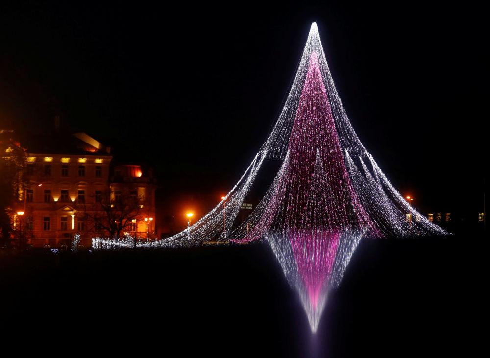 立陶宛發光的聖誕樹