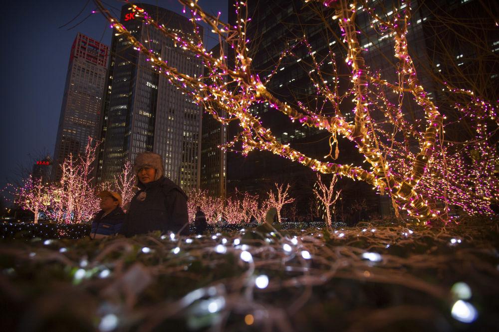 北京街道上彩燈裝飾的樹木
