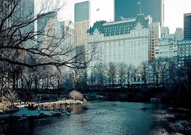 纽约一家宾馆向旅客推出感受《小鬼当家》主人公一天生活的服务项目
