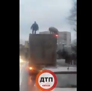 有人在基辅近郊拍下一名男子和猪在车顶上战斗的视频