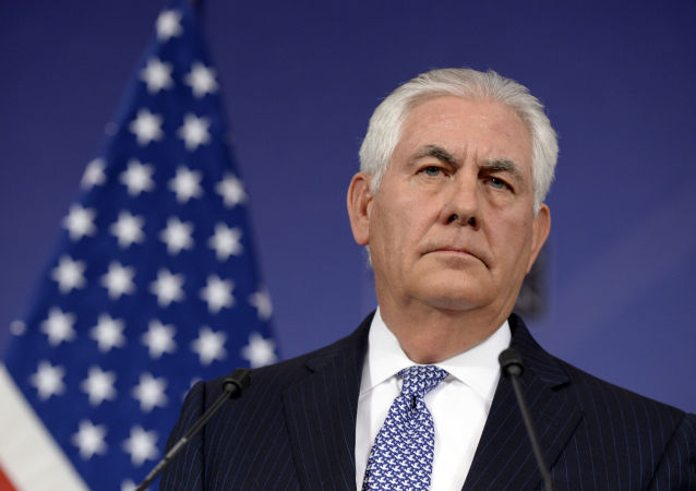 美国务卿访埃期间暂未安排与俄外长会晤