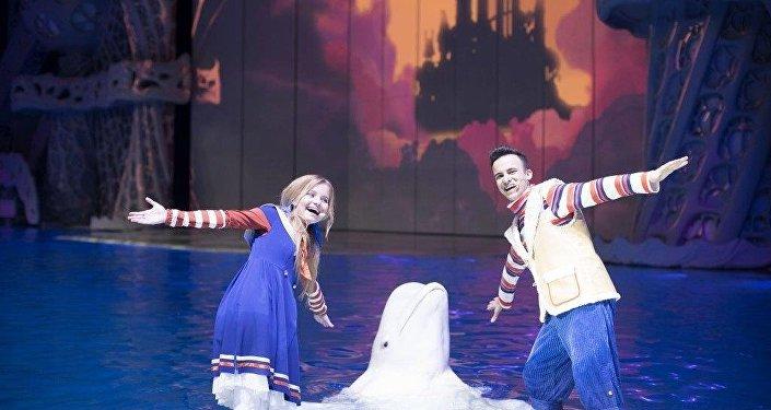 海洋动物们给大家奉献令人赞叹不已的新年剧目