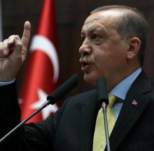 埃爾多安:土耳其認為攻擊其經濟等於攻擊其國旗和信仰