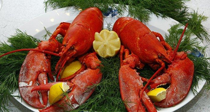 瑞士將修改法律保障龍蝦無痛死亡權利