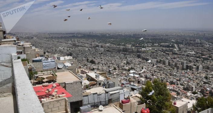 美國務院:就敘利亞問題美方打算通過聯合國行動而非敘全國對話大會