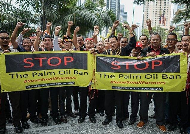 媒体:马来西亚两千多油棕园主在欧盟代表处前举行抗议
